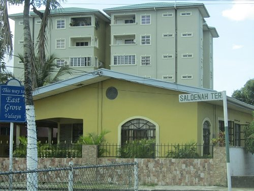 East Grove behind NHA Housing Village